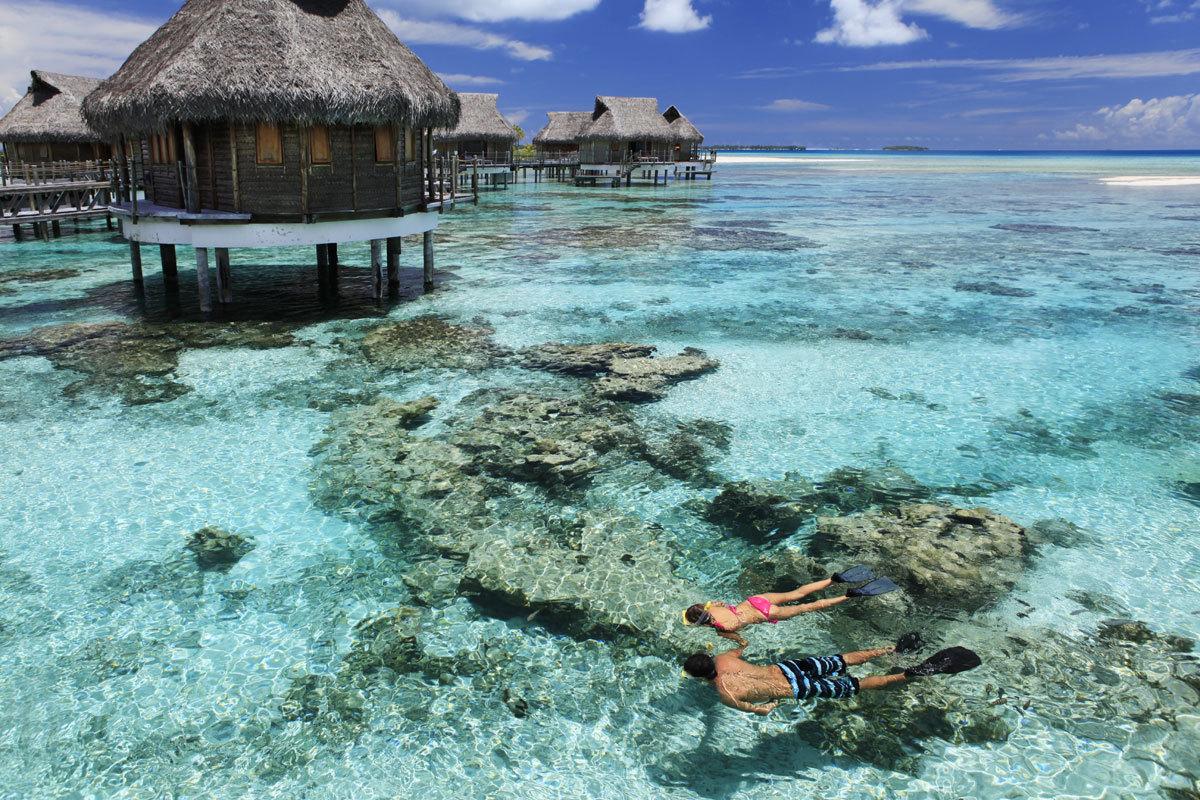 Snorkeling devant les bungalows pilotis